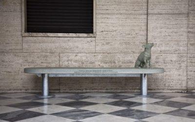 Al PART di Rimini esposte anche le opere degli artisti Garutti e Montesano